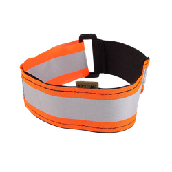 Picture of Collar – orange band